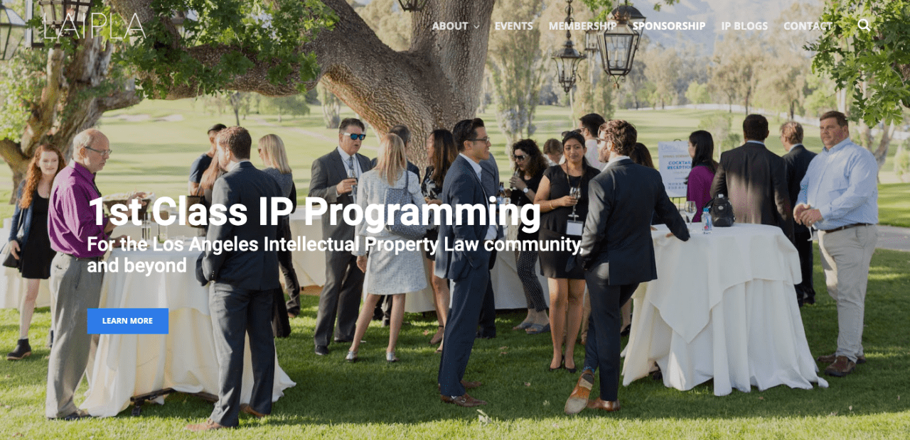Website design for LAIPLA in Los Angeles, California